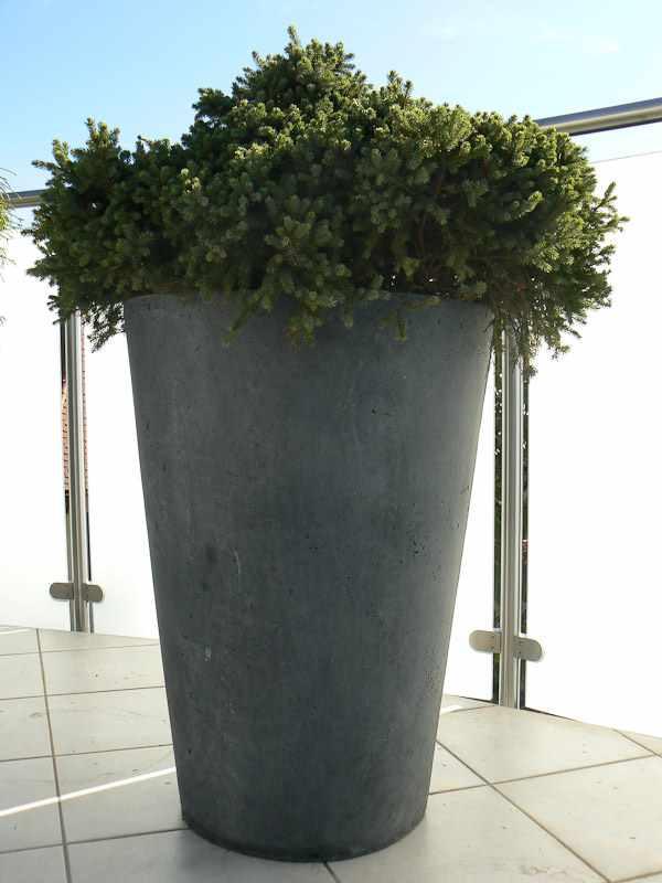 Bürogestaltung Beispiele ~ Terrassengestaltung  Bürogestaltung  Blumen  Pflanzen