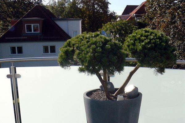 Bürogestaltung Beispiele ~ Terrassengestaltung & Bürogestaltung mit Blumen & Pflanzen